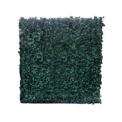 Kunsthaag Hedera Helix Woerner 150x200 cm (bxh)