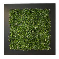 Planten schilderij Jasmine (kunsthaag) 67x67 cm