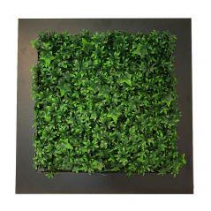 Planten schilderij Hedera (kunsthaag) 67x67 cm