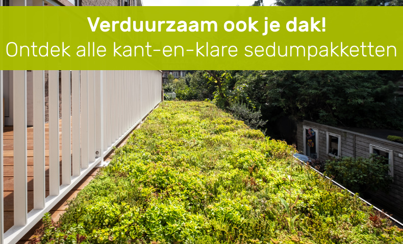 In één dag een groen dak met de sedumcassettes en matten