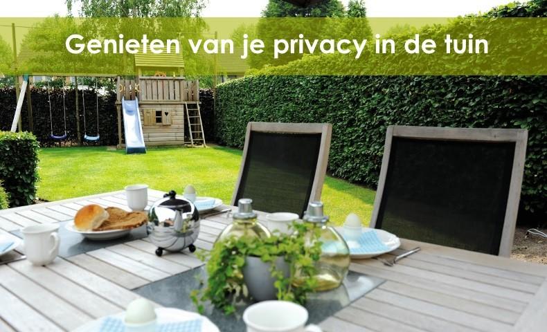 meer privacy in de tuin met een kant-en-klare haag